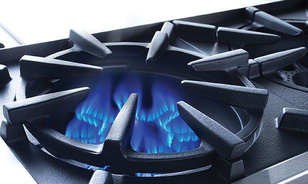 bluestar platinum series bsp366bng open burner system