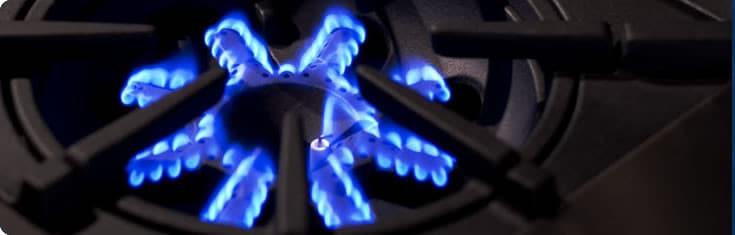 bluestar rnb series rnb364ftbv2 bluestar ultranova burner