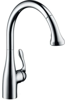 Hansgrohe Allegro E Series 06460860 - View of Chrome