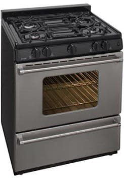 Premier Pro Series P30S3102P - Stainless Steel
