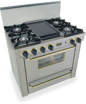FiveStar TTN3107 - Stainless Steel with Brass Trim
