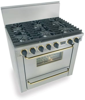 FiveStar TTN3117BSW - Stainless Steel with Brass Trim