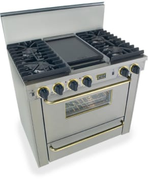 FiveStar TTN3317 - Stainless Steel with Brass Trim