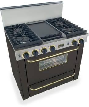 FiveStar TTN3317SW - Black with Brass Trim