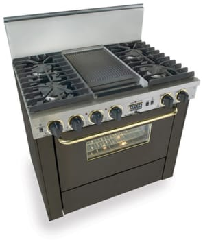 FiveStar TTN3377SW - Black with Brass Trim