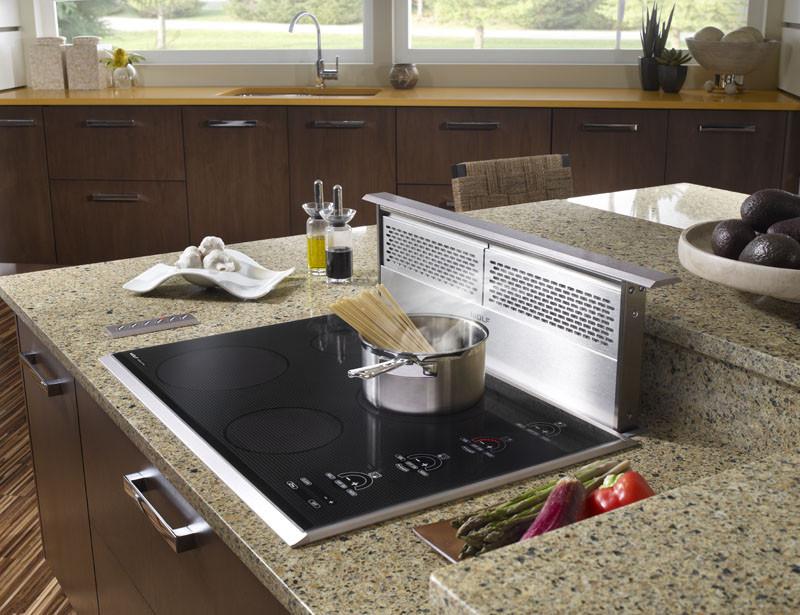 Wolf Dd30 30 Inch Downdraft Ventilation System With 3