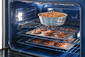 Perfect Taste™ Dual Convection