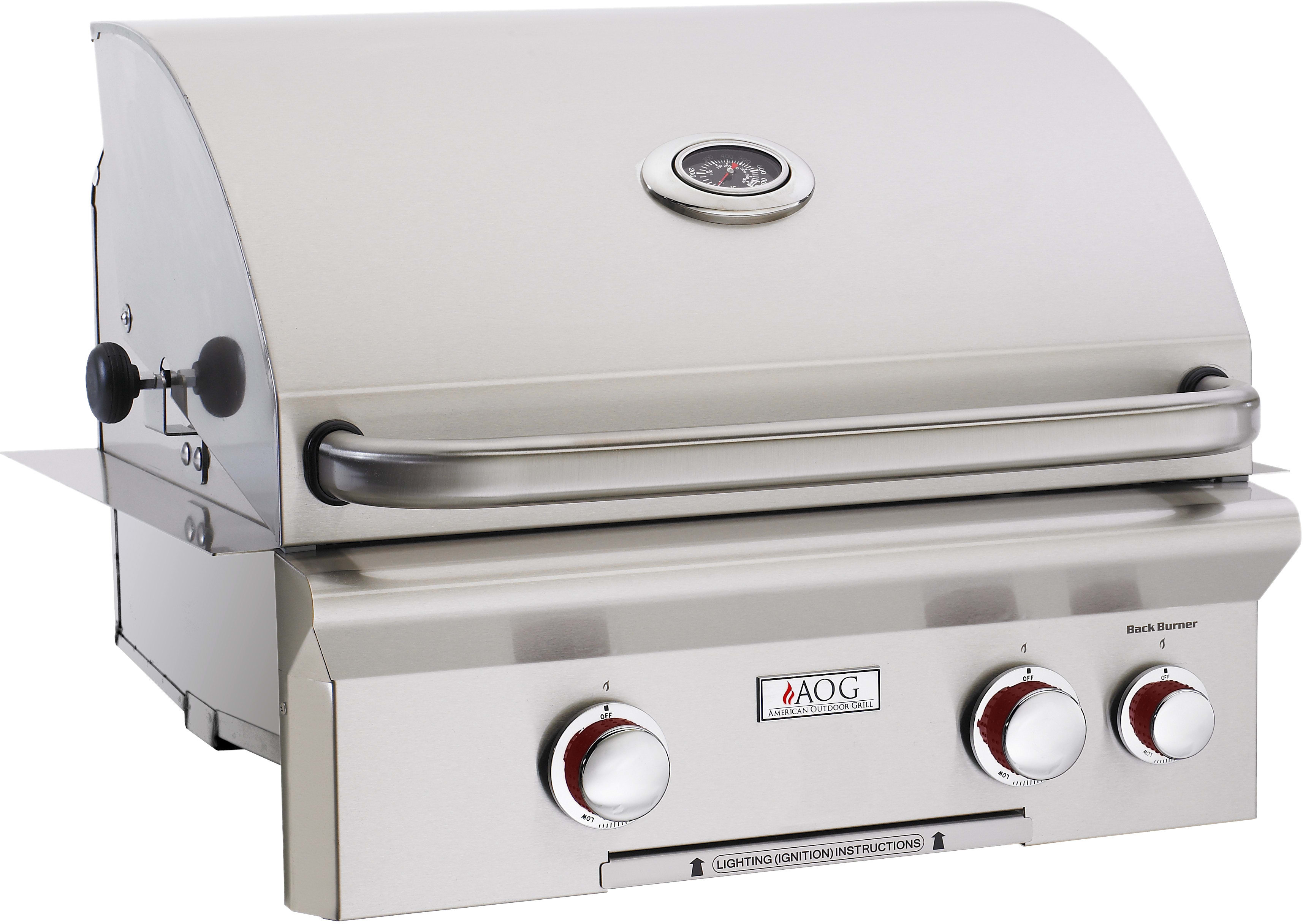 american outdoor grill 24nbt00sp 24 inch builtin gas grill with 432 sq in cooking surface 2 16000btu primary burners analog thermometer and stainless - Natural Gas Grill