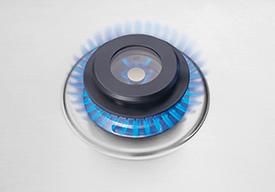 Min-2-Max® Gas Burner